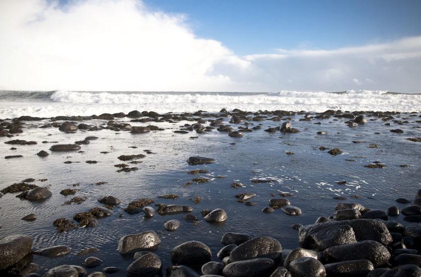 Gleðilegt sumar – Sumarkaffi Ægis í dag