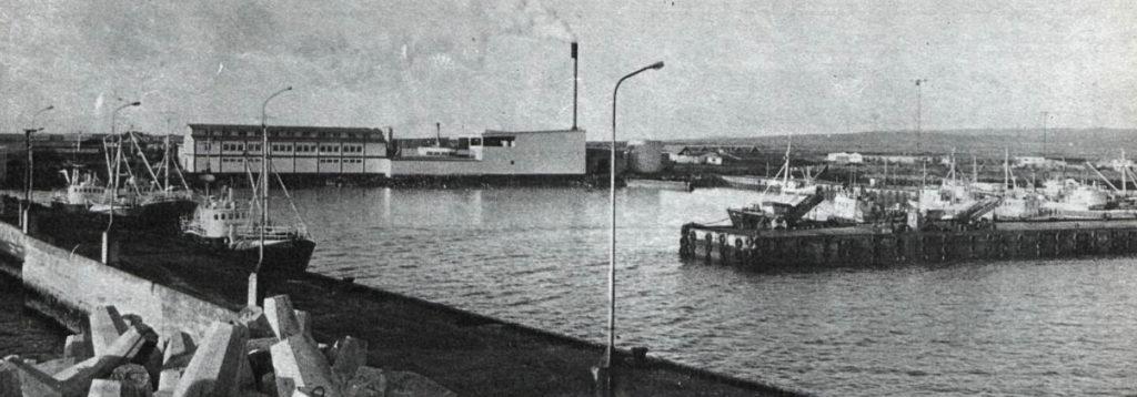 hofnin_1976