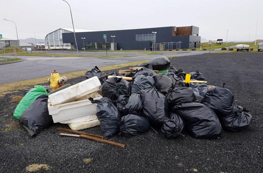 Plokkað í Þorlákshöfn á Stóra plokkdeginum