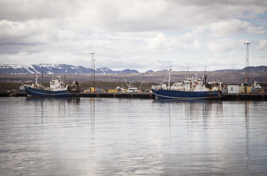 """""""Þeir neyða í raun og veru þessi smærri fyrirtæki til þess að selja kvótann"""""""